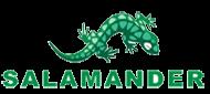 ����  ����������� salamander